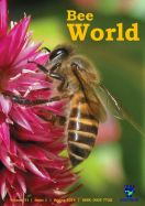 Cambodian bee decorate front cover of the magazine BEE WORLD